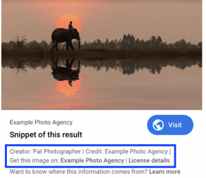 Mockup of how licensable images might look on google.com when it launches to users later this year.